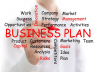 I will run a professional business review that can attract potential investors and bank loans.