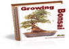 send a 20 page article on growing Bonsai